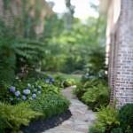 Shade garden - after